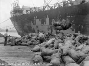 Sacks being loaded on a ship on the Newcastle waterfront, 1940s.