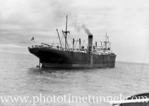 Ship Sagoland photographed from the pilot boat Birubi, Newcastle, NSW, October 1935. (1)