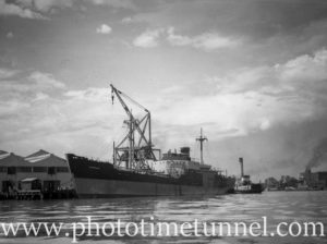 Ship Dorrigo at Newcastle State Dockyard, NSW, April 23, 1946. (2)