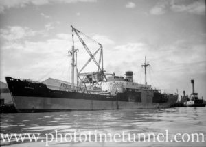 Ship Dorrigo at Newcastle State Dockyard, NSW, April 23, 1946.