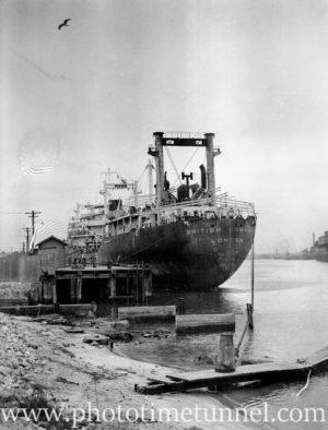 Tanker British Commando at the oil berth, Newcastle, NSW, January 31, 1947. (2)