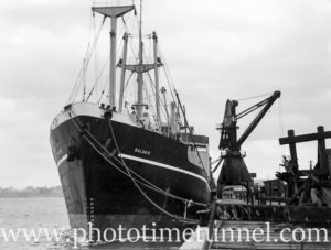 Ship Balarr in Newcastle Harbour, NSW, March 18, 1949.