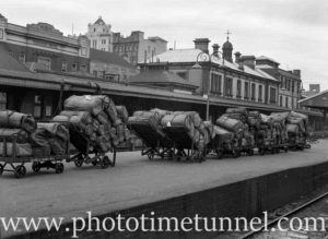 Parcels office at Newcastle Railway Station, NSW, November 29, 1949 (2)