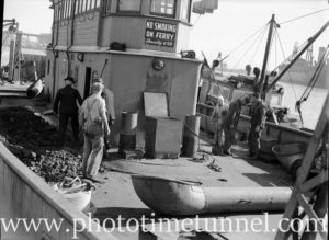 Harbour punt Mildred laid up in Newcastle Harbour, NSW, ready for sale, June 3, 1946. (3)