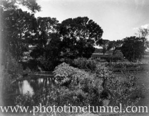 View of Hollywood Pleasure Grounds, Lansvale, Sydney, circa 1928. (4)
