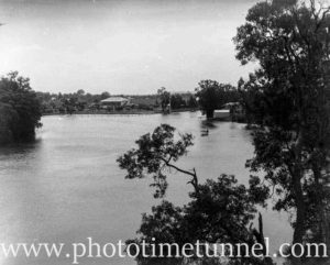 View of Hollywood Pleasure Grounds, Lansvale, Sydney, circa 1928. (7)