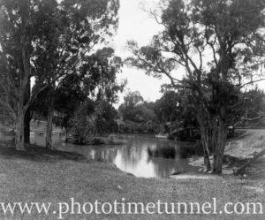 View of Hollywood Pleasure Grounds, Lansvale, Sydney, circa 1928. (9)