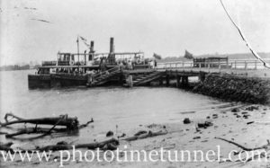 Steam vessels at the government wharf, Tomago, on the Hunter River near Newcastle, NSW. (1)