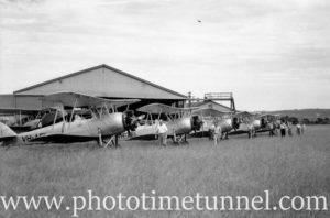 Avro Cadets at Newcastle Aero Club, NSW (2)