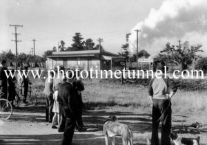 First coal from Aberdare colliery passes Caledonia Station, Cessnock, NSW, after the 1949 coal strike.