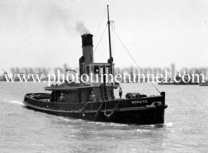 Tug Moruya in Newcastle Harbour, NSW, January 26, 1937.
