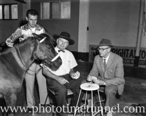 Topsy the Wonder Horse, trained by Tom Dennis, playing cards with reporter Kevin Plummer, June 10, 1961.