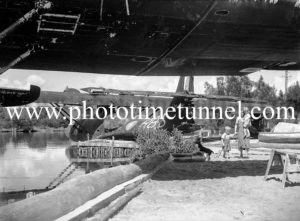 PBY Catalina flying boats on Stoney Creek, Lake Macquarie, March 25, 1947. (8)