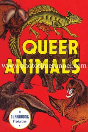 Queer Animals, Currawong Press vintage book cover art
