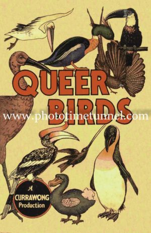 Queer Birds, Currawong Press vintage cover art