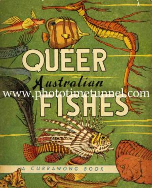 Queer Australian Fishes, vintage cover art