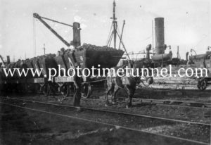 Horse pulling coal wagons on the waterfront, Newcastle, NSW, circa 1940s