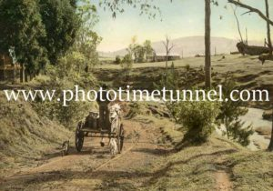 Farm dray on a country road in the Hunter Valley, NSW. Hand-coloured photograph.