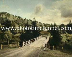 Bridge near Allynbrook in the Hunter Valley, NSW. Hand-coloured photograph.