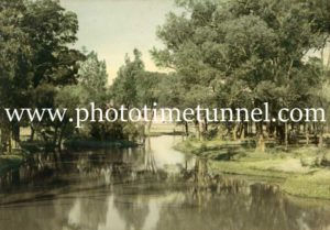 Rural scene in the Hunter Valley, NSW. Hand-coloured photograph.