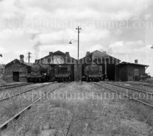 Locomotives at the depot, South Maitland Railways, NSW.