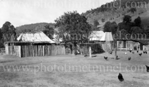Rustic buildings in the Burragorang Valley, NSW, 1936.