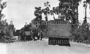 Motor lorries bogged on a sandy road, Cessnock area, NSW, circa 1930s.