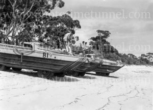 Amphibious vehicles at Gan Gan army camp, Port Stephens, NSW, February 28, 1960.