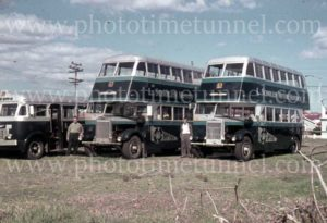 Scholes Motor Service buses for Stewarts and Lloyds workers, Newcastle, NSW, 1960s.