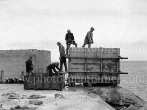 Men working on Nobbys breakwater, Newcastle, NSW, June 23, 1939.