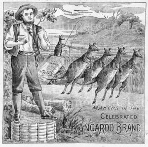 Celebrated Kangaroo brand, vintage Australian rural engraved advertisement, c1900.