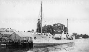Riverboat Melinga at a wharf on the Clarence River, NSW, circa 1940s. (2)