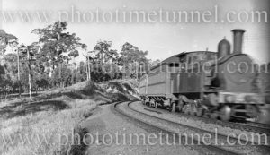 Steam locomotive hauling passenger cars in bushland setting, NSW, circa 1930s.
